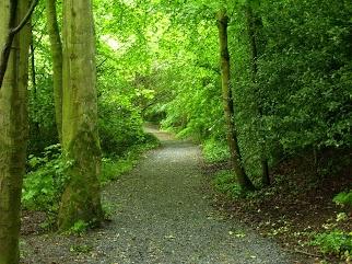 Kilkenny Castle Grounds, Co. Kilkenny