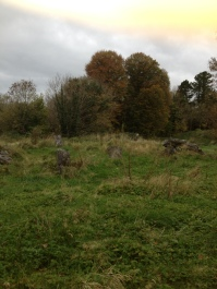 Dunkerron Woods area, Co. Kerry